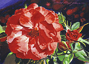 Rosebud Paintings - Cartier Rose by  David Lloyd Glover