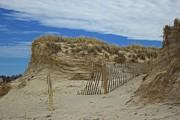 Amazing Jules - Carved Dunes