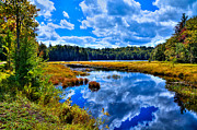 Adirondacks Photo Posters - Cary Lake near Old Forge New York Poster by David Patterson