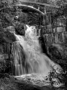 Bill Gallagher Photography Prints - Cascade Creek Print by Bill Gallagher