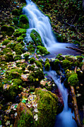 Waterfalls Posters - Cascade Creek Poster by Chad Dutson