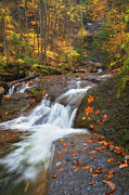 Finger Lakes Photos - Cascade In The Glen by Michele Steffey