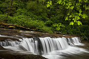 Stream Photos - Cascades along a Creek by Andrew Soundarajan