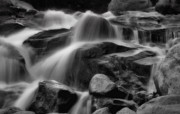 Meditating Digital Art Posters - Cascades in Black and White Poster by Ellen Lacey