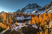 Cascades Ring Of Larches Print by Mike Reid