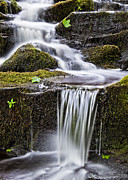 Ledge Photos - Cascading Brook by Alan L Graham