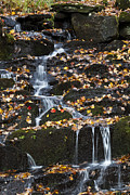 Alan L Graham - Cascading Brook In Autumn