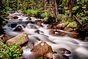 James BO  Insogna - Cascading Rocky Mountain Forest Creek