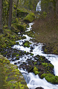 Cascading Water Prints - Cascading water in the Columbia Gorge Oregon. Print by Gino Rigucci