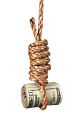 Financial Failure Prints - Cash in noose Print by Joe Belanger