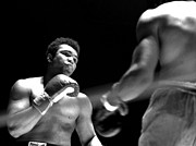 Heavyweights Prints - Cassius Clay - Look Out Print by Robert  Rodvik