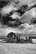 Farmlife Prints - Castile Barn 806b Print by Guy Whiteley