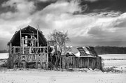 Farmlife Prints - Castile Barn 818b Print by Guy Whiteley