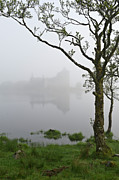 Argyll And Bute Posters - Castle Kilchurn tree Poster by Gary Eason