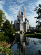 Disney Photos - Castle Reflections by Nora Martinez