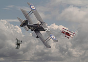 Biplane Prints - Cat among the Pigeons Print by Pat Speirs