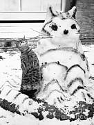 Jack Rosen - Cat And Snowcat
