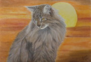 Dessin Prints - Cat and Sunset  Print by Cybele Chaves