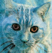Cat Prints Digital Art Framed Prints - Cat Art - Feline Blue Framed Print by Sharon Cummings