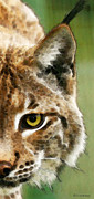 Big Cats Prints - Cat Art - Lynx 2 Print by Sharon Cummings