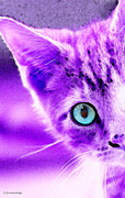 Cat Digital Art - Cat Art - Peek A Boo Blue by Sharon Cummings