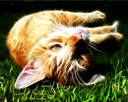 Kitten Prints Digital Art Posters - Cat At Play Poster by Jo Collins