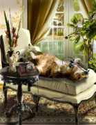 Furniture Originals - Cat Chat by Gina Femrite
