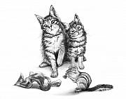 Illustration Drawings - Cat Chips  by Peter Piatt