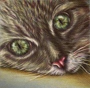 Eyes Detail Drawings - Cat Component by Lisa Marie Szkolnik