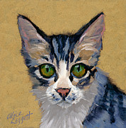 Striped Cat Framed Prints - Cat Eyes Framed Print by Alice Leggett