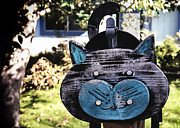 Kitty Cat Photo Prints - Cat Got Your Mail? Print by Caitlyn  Grasso