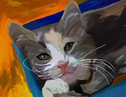 Feline Paintings - Cat in the Box by Patti Siehien