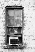 Gary Heller Metal Prints - Cat in the Old Window Metal Print by Gary Heller