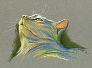Whiskers Pastels Metal Prints - Cat Looking up to Heaven Metal Print by MM Anderson