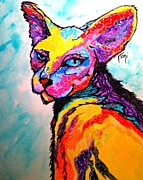 Toni Rivas - Cat of a different color