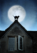 Old Houses Framed Prints - Cat on a Roof in the Moonlight Framed Print by Jill Battaglia