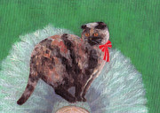 Tortie Paintings - Cat on Christmas Tree by Kazumi Whitemoon