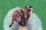 Tortie Paintings - Cat on Tree by Kazumi Whitemoon