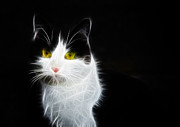 Cat Portraits Metal Prints - Cat portrait fractal artwork Metal Print by Matthias Hauser