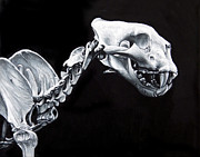 High Realism Prints - Cat Skull and Skeleton Painting Study Print by Brent Schreiber