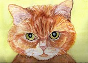 Flat Mixed Media Posters - Cat Stares Poster by DJ Laughlin