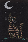 Star Drawings Framed Prints - Cat under the moonlight Framed Print by Angel  Tarantella