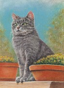 Pamela Humbargar - Cat With Flower Pots
