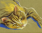 Cat With Gold Eyes Print by MM Anderson