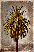 Textured Tree Prints - Catalina 1932 Postcard Print by Carol Leigh