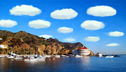 Catalina Prints - Catalina Panorama Print by Snake Jagger