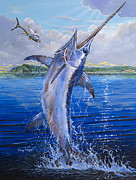 Striped Marlin Prints - Catalina Sword OFF0045 Print by Carey Chen