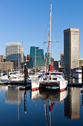 Pleasure Photos - Catamaran in Baltimore Inner Harbor I by Clarence Holmes