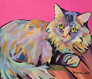 Cat Prints Framed Prints - Catatonic Framed Print by Pat Saunders-White