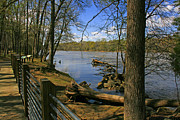 South Carolina Prints - Catawba River Walk Print by Andy Lawless